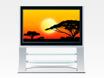 Ethnic plasma television Royalty Free Stock Photos