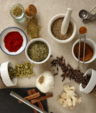 Ethnic spices Royalty Free Stock Photography