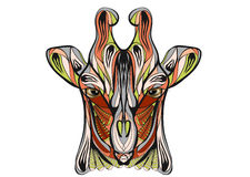 Ethnische Giraffe Stockbild