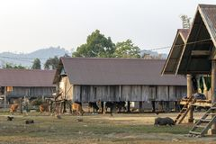 Ethnisches Haus in LAK-Dorf in Dac Lak, Vietnam stockfoto