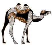 Ethnisches Kamel lizenzfreie abbildung