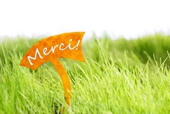 Etichetta con il francese Merci che i mezzi vi ringraziano su erba verde Immagine Stock