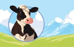 Etichetta con una mucca su un fondo della natura Fotografie Stock