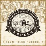 Etichetta d'annata del raccolto della mela Fotografie Stock Libere da Diritti