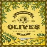 Etichetta d'annata delle olive illustrazione vettoriale