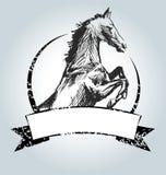 Etichetta d'annata di vettore con il cavallo del disegno Fotografia Stock