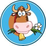 Etichetta del cerchio del fumetto con la mucca Fotografia Stock