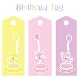 Etichetta del regalo di compleanno con i procioni variopinti svegli Fotografia Stock