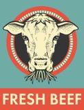 Etichetta del toro sveglio Fotografie Stock