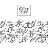Etichetta dell'olio d'oliva Illustrazione disegnata a mano di vettore del ramo con la b Fotografia Stock