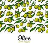 Etichetta dell'olio d'oliva Illustrazione disegnata a mano di vettore del ramo con la b Fotografia Stock Libera da Diritti