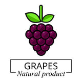 Etichetta dell'uva del fumetto Fotografia Stock Libera da Diritti