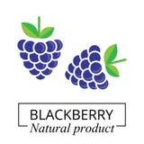Etichetta di Blackberry Immagini Stock Libere da Diritti