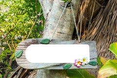 etichetta di legno sull'albero in parco spazio in bianco sull'etichetta di legno per il messaggio di concentrato immagine stock