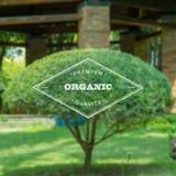 Etichetta di Logo Template Ecology Organic Food su Blured Fotografia Stock
