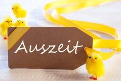 Etichetta di Pasqua, pulcini, tempo morto di mezzi di Auszeit Immagine Stock