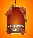 Etichetta di prezzi di autunno Immagine Stock Libera da Diritti