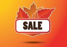 Etichetta di vendita delle foglie di autunno Immagine Stock Libera da Diritti