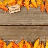 Etichetta felice di ringraziamento con il frame delle foglie di autunno su legno Fotografie Stock