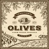 Etichetta marrone d'annata delle olive Fotografia Stock