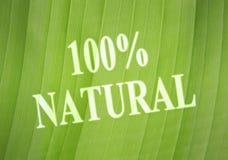 Etichetta naturale Fotografia Stock Libera da Diritti