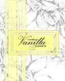 Etichetta per olio essenziale di vaniglia Immagine Stock Libera da Diritti
