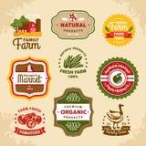 Etichette d'annata dell'azienda agricola Fotografia Stock Libera da Diritti