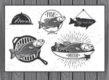 Etichette dei frutti di mare, progettazione di imballaggio del pesce Immagini Stock Libere da Diritti