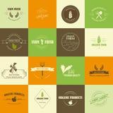 Etichette dell'alimento biologico Fotografia Stock