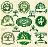 Etichette dell'annata con gli alberi Immagini Stock Libere da Diritti