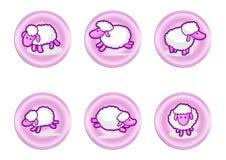 Etichette delle pecore Fotografia Stock
