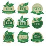 Etichette di Eco con retro progettazione d'annata. Fotografia Stock Libera da Diritti