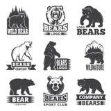 Etichette di sport con le illustrazioni degli animali Immagini degli orsi per progettazione di logo royalty illustrazione gratis