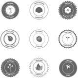 Etichette e distintivi dei cosmetici illustrazione vettoriale
