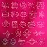 Etichette ed elementi di progettazione Immagine Stock