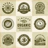 Etichette organiche d'annata e distintivi messi