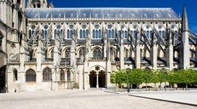 布尔日大教堂etienne圣徒 库存照片