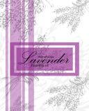 Etiket voor etherische olie van lavendel stock foto