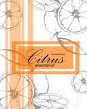 Etiket voor etherische olie van sinaasappel royalty-vrije stock afbeelding