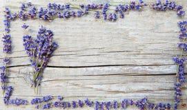 Etiket voor lavendelproducten stock foto