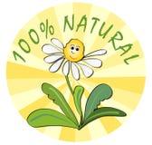 Etiket voor 100% natuurlijk product van ecologisch milieu Royalty-vrije Stock Foto's