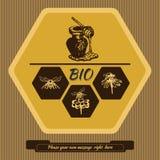 Etiketembleem voor de reclame van en het verkopen van honing 2 Stock Afbeelding