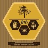 Etiketembleem voor de reclame van en het verkopen van honing 3 Stock Foto