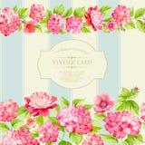 Etikett av de rosa blommorna vektor illustrationer