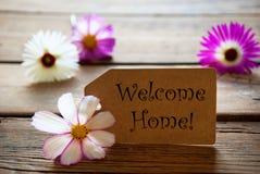 Etikett med textvälkomnandehemmet med Cosmea blomningar Arkivfoton