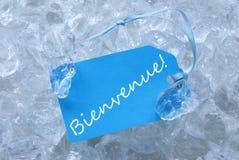 Etikett på is med Bienvenue hjälpmedelvälkomnande Arkivbilder