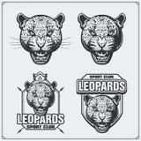 Etiketten, emblemen en ontwerpelementen voor sportclub met luipaard Stock Afbeeldingen