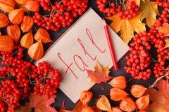 Etiketten med orden faller och en färgrika Autumn Leaf i bakgrunden royaltyfria foton