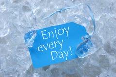 Etiketten på is med tycker om varje dag Royaltyfria Foton