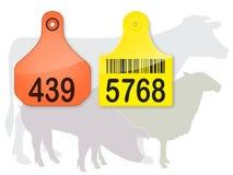 etiketter för djuröralantgård Arkivfoton